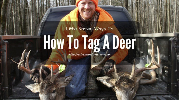 How-To-Tag-A-Deer