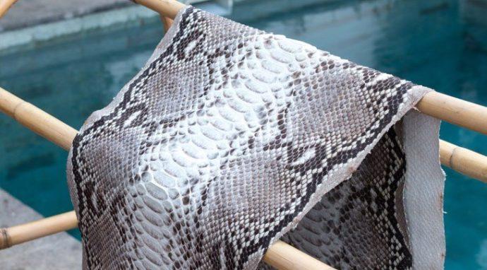 Tan-A-Rattlesnake-Skin