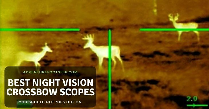best-night-vision-crossbow-scopes-review