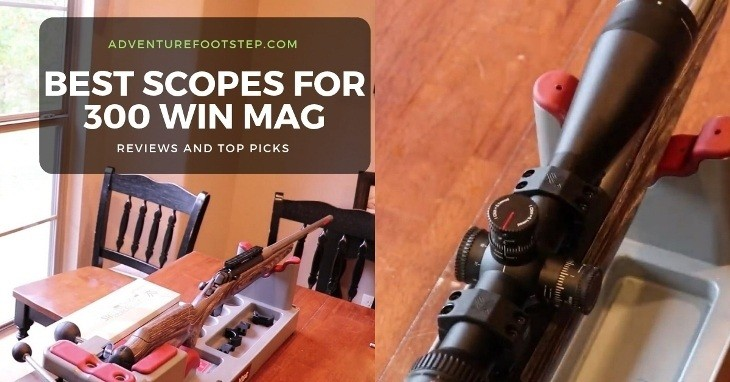 best-scope-for-300-win-mag
