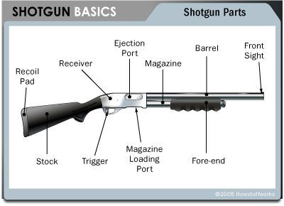 A-basic-sketch-of-a-shotgun