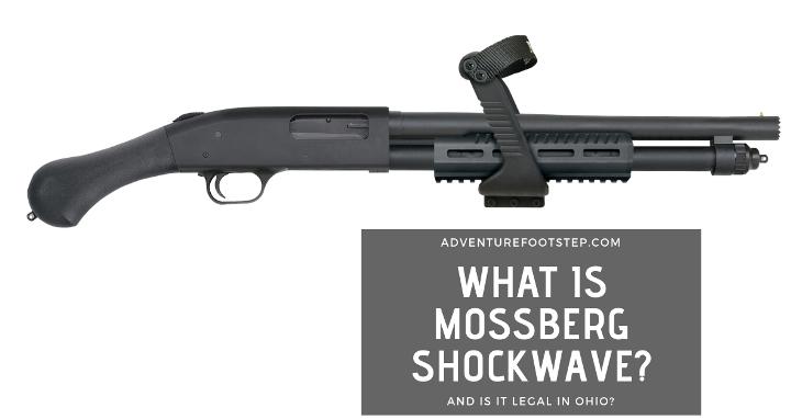 mossberg-shockwave