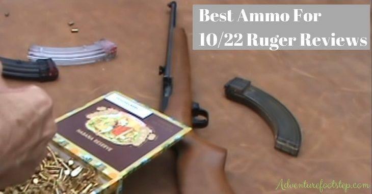 best-ammo-for-1022-ruger