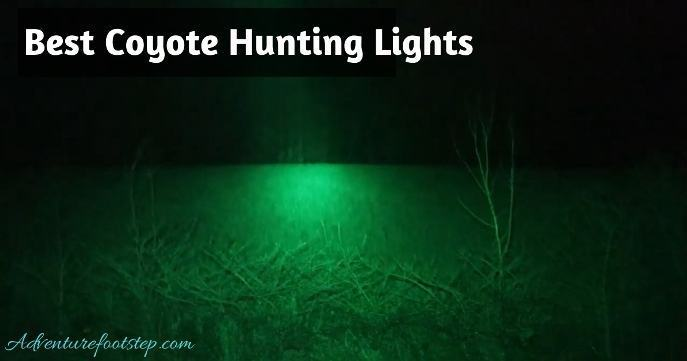 Best-Coyote-Hunting-Lights
