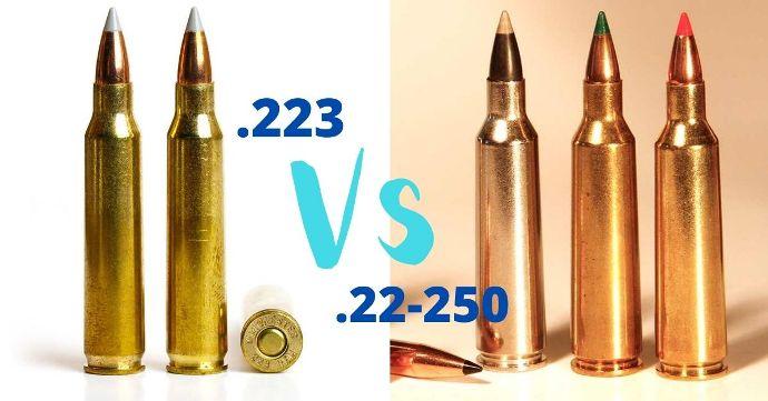 223-vs-22-250